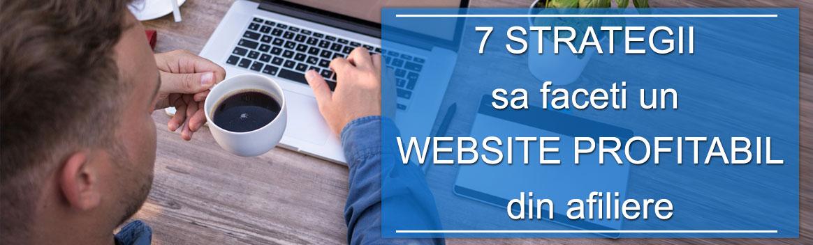 Cum sa va faceti un website profitabil